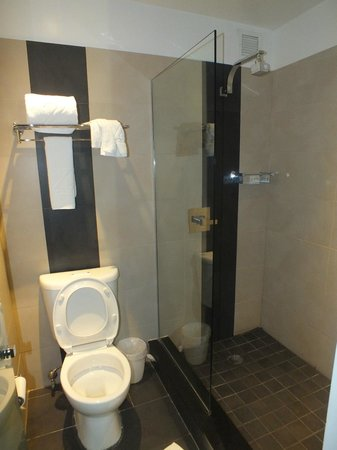 Z NYC Hotel : bagno