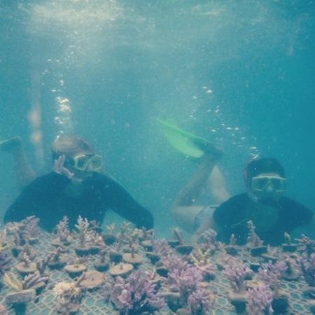 Leleuvia Island Resort: Coral Farming