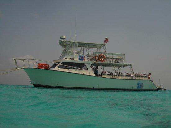 Ocean Encounters Diving : @Klein Curacao