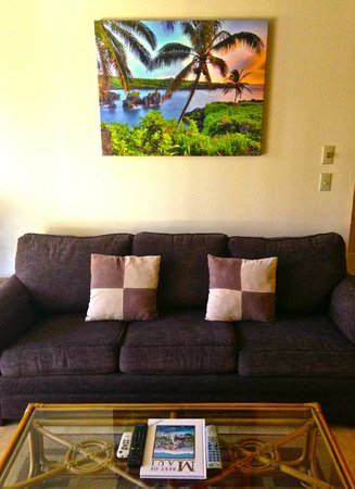 Sunny Maui Vacations : Queen size pull out couch