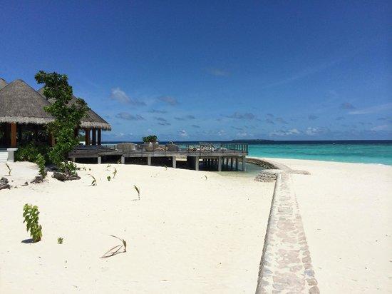 Dusit Thani Maldives: バー
