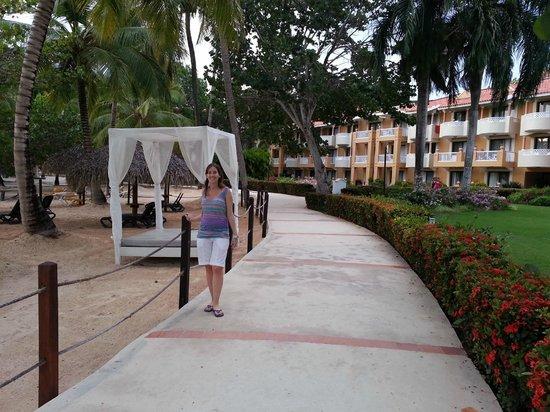Viva Wyndham Dominicus Palace : Camino del Hotel