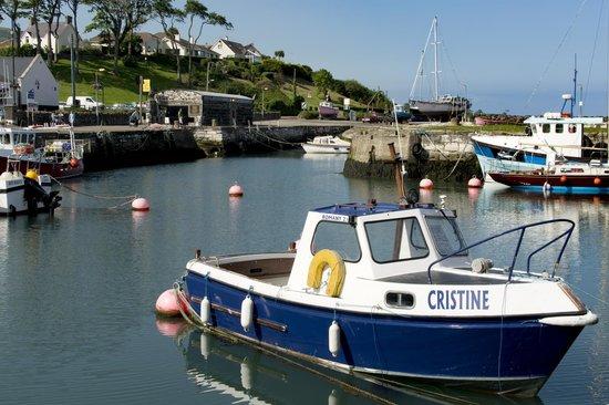 Craig Cottage Bed & Breakfast: harbour