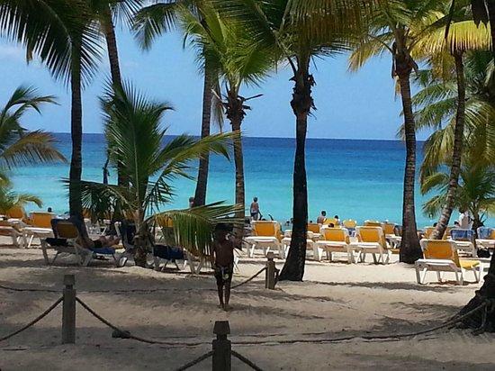 Viva Wyndham Dominicus Palace: Playa