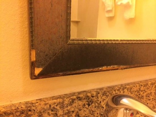 DoubleTree by Hilton Hotel West Palm Beach Airport: Bath mirror frame in need of repair/replacement