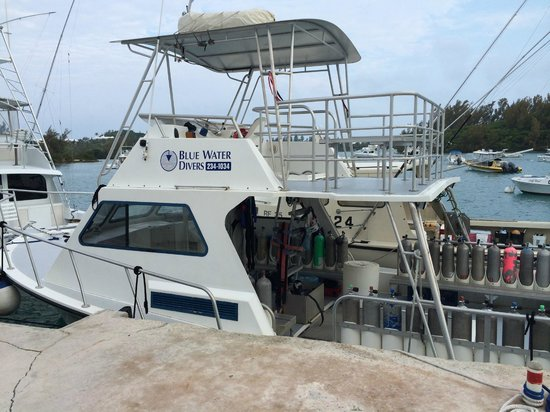 Blue Water Divers & Watersports Ltd : A nicely equipped dive boat