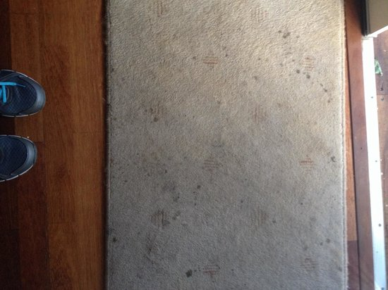 Nannup Valley Chalets: Filthy mat inside door