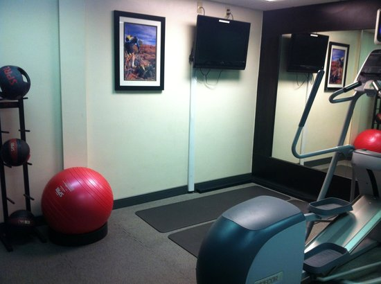 Homewood Suites by Hilton Phoenix - Biltmore: gym