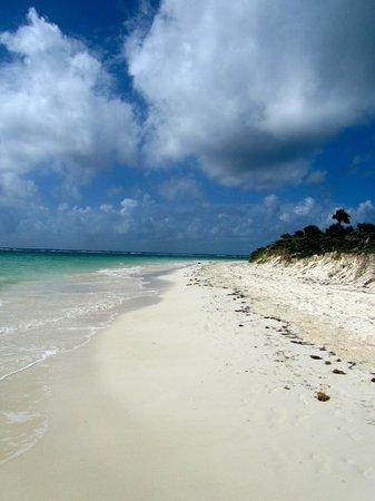 Secrets Maroma Beach Riviera Cancun: down the beach