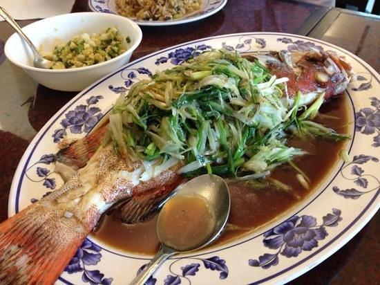 Chi: Streamed fresh grouper! A fanastic dish! Awsome taste!