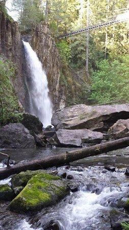 Drift Creek Falls Trail: Drift Creek Falls