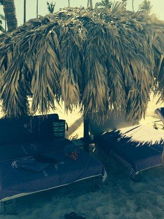 Paradisus Palma Real Golf & Spa Resort: Ask Francisco!