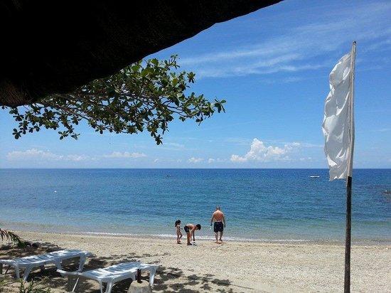 Facade of Casa Alexandra - Picture of Palm Beach Resort, Laiya ...