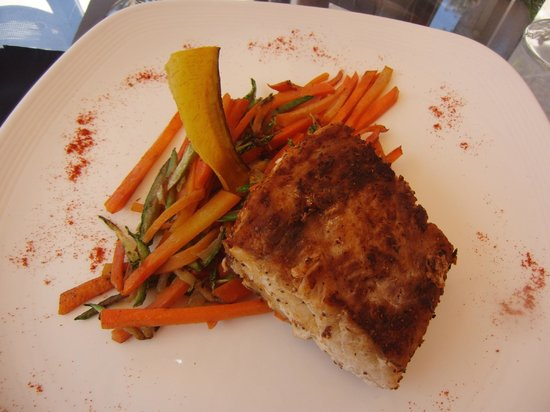 Barcelo San Jose Palacio - Rancho Grill - Grilled Sea Bass Filet