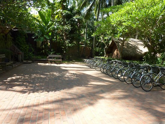 Le Bel Air Boutique Resort: Bicycles