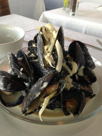 Devon's: Steamed Cape Cod Mussels