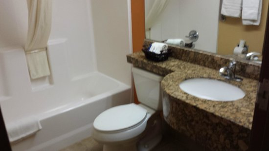 Microtel Inn & Suites by Wyndham South Bend/At Notre Dame University: clean bathroom