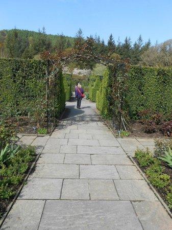 RHS Garden Rosemoor: too rigid