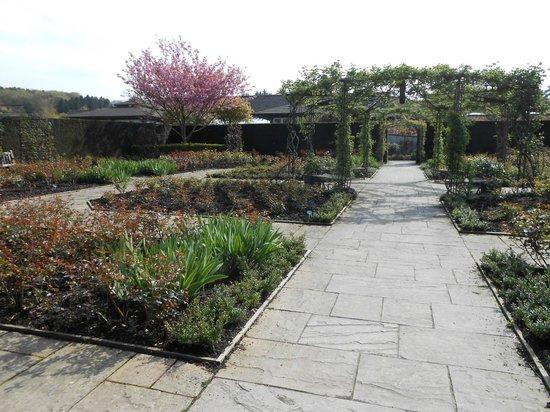 RHS Garden Rosemoor: Morre structure