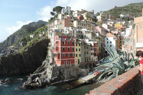 Bar Conchiglia: Gorgeous views