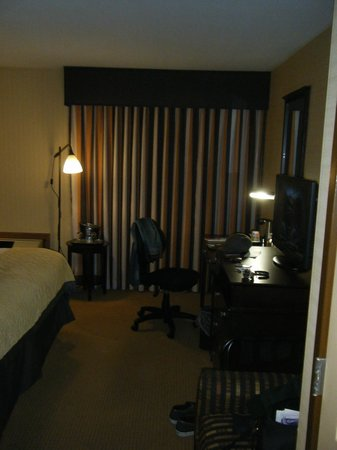 Wyndham Garden Newark Airport: Drapes