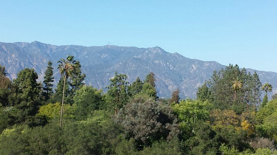 The Langham Huntington, Pasadena, Los Angeles: Loved the view of the mountains