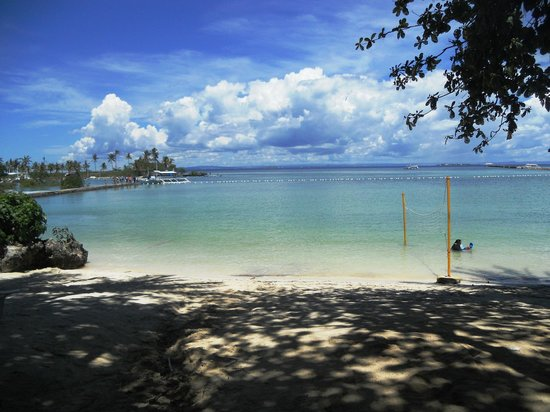 Pacific Cebu Resort : View of the beach