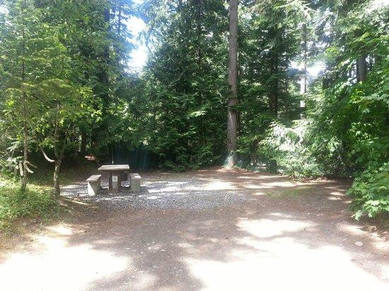 Coquihalla Campground: Site
