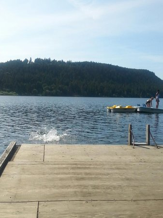 Cedar Beach Resort: lake side swimming!