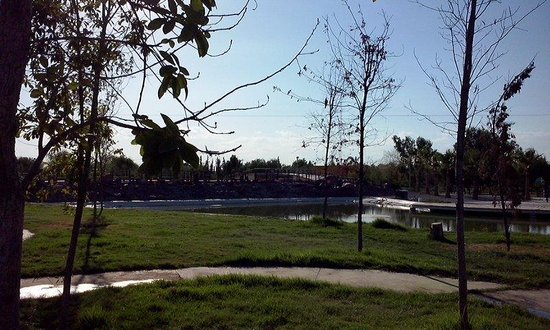 Bosque Urbano Torreon