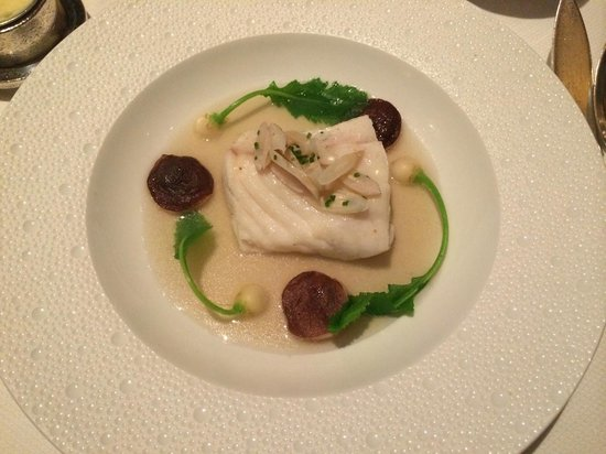 Le Bernardin: Lightly salted grilled cod; bell pepper salad, warm scallion vinaigrette