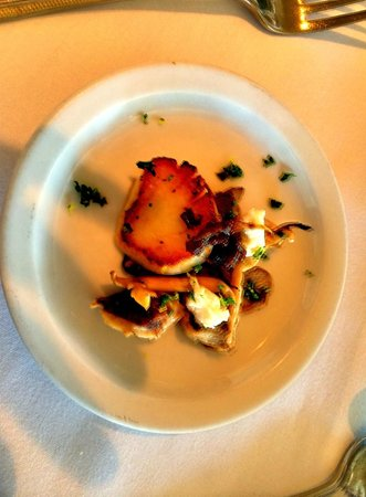 SeaVenture Restaurant: Seared scallops with mushrooms and goat cheese. Perfect