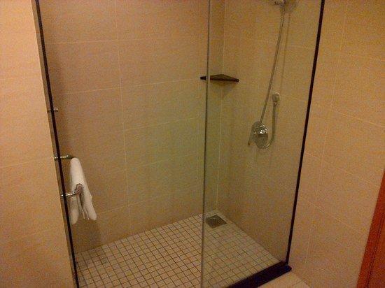 Holiday Inn Melaka : Shower