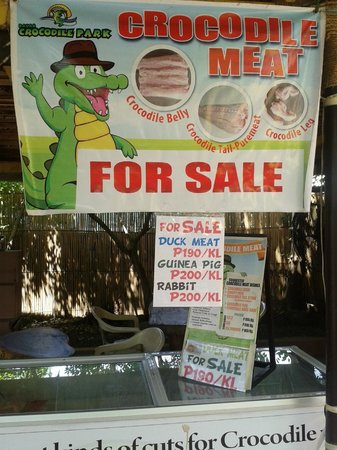 Crocodile Park: take home some if you want