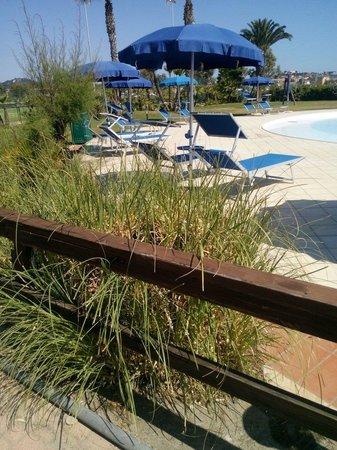 Hotel Airone del Parco & delle Terme : Nido in piscina