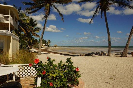 Ocean Key Resort & Spa: ランチを食べたドライブインは海の家