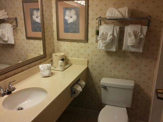 Wingate by Wyndham Duluth/Atlanta: Generic bathroom