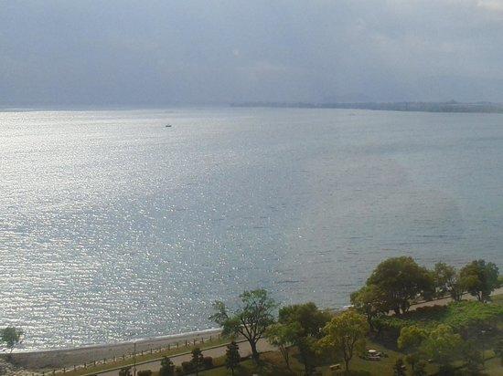 Nagahama Royal Hotel: 琵琶湖