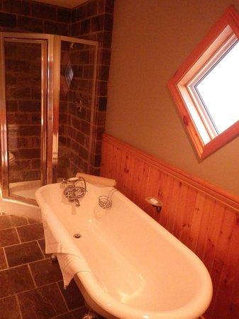 Buffalo Mountain Lodge: 風呂