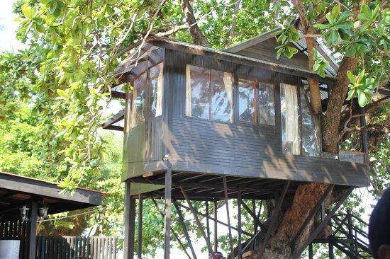 Melina Beach Resort Pulau Tioman Malaysia: The tree house