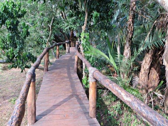 Ruzizi Tented Lodge: Walkway linking the tented huts