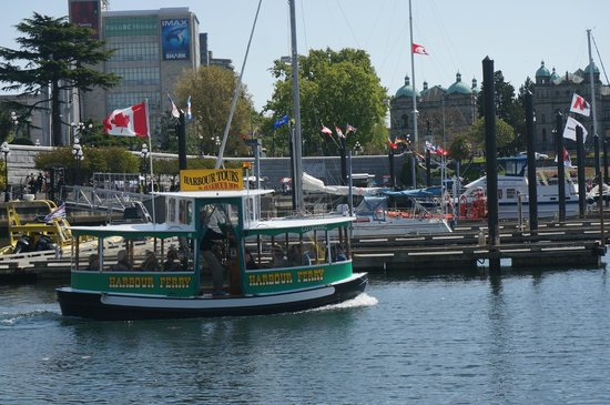 Victoria Harbour Ferry : Pickle boat ferry