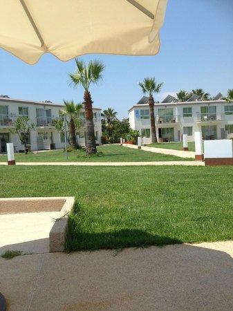 Sunprime Ayia Napa Suites: Hotellområdet