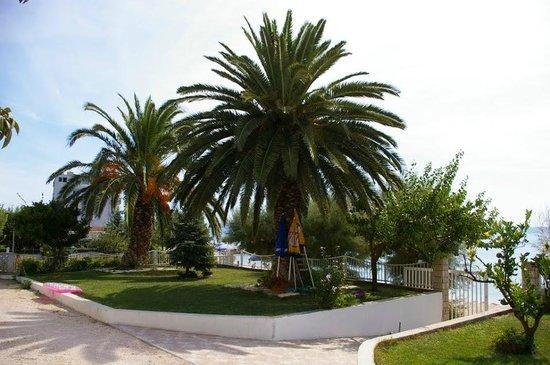 Villa Perisic : garden