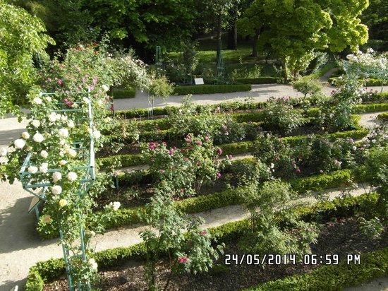 Jardin de l'Arquebuse : The Garden