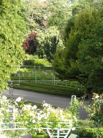 Jardin de l'Arquebuse : Garden