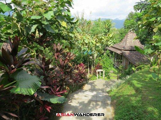 Plataran Borobudur Resort & Spa: Paddy Cabanas