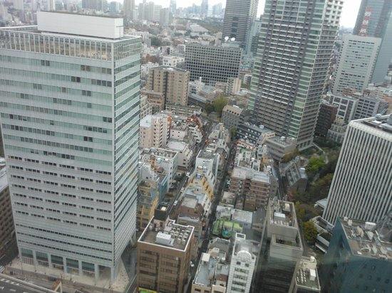 Ana Intercontinental Tokyo: Вид из номера
