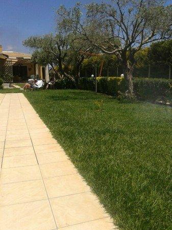 Villa Adriana B&B : un angolo del giardinetto intorno alla piscina