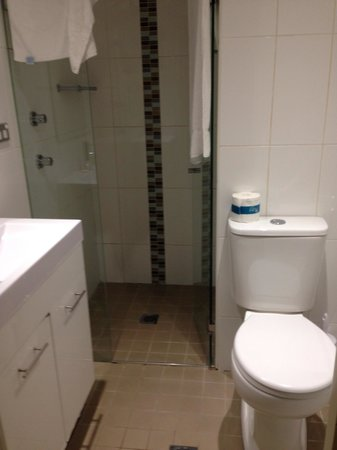 The Blenheim Randwick: Tiny bathroom